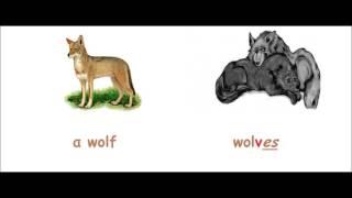 Видео урок .Английский для детей.Урок 16.Множественное число существительных