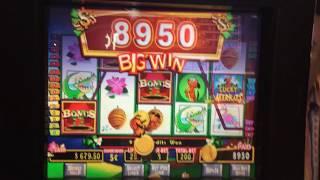 Lucky Meerkats Slot Machine Bonus - Big Win!!!
