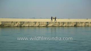 Soil erosion and sediment deposit along Brahmaputra river bank in Assam thumbnail