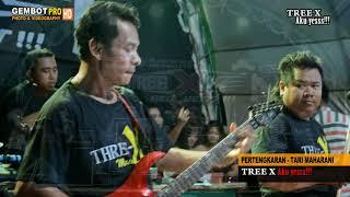 VIDEO VIRALL ...... TARI MAHARANI PERTENGKARAN - TREE X LIVE LEBAK