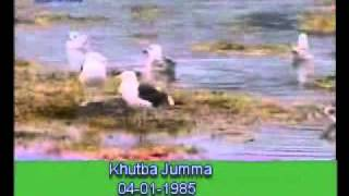 Khutba Jumma:04-01-1985:Delivered by Hadhrat Mirza Tahir Ahmad (R.H) Part 4/5