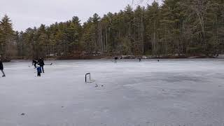 Welsh Terrier playing ice hockey