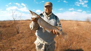 ЭТО ЩУЧИЙ ДЕНЬ Клюёт на каждом забросе Рыбалка 2020 Ловля на спиннинг 12