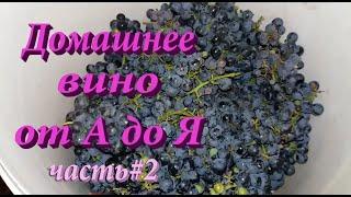 Как сделать домашнее вино из винного винограда от А до Я часть #2!
