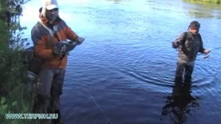 Рыбалка на Кольском. Поимка семги