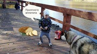 Наш парк. Макс находит друга, кормит уток и собаку хлебом! Божья коровка улетит или нет?