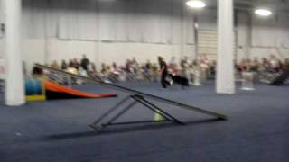 National Dog Show 2009 -- Oaks, Pa -- Agility Demonstration W/ Aussie