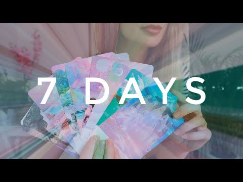 Next 7 Days with your person / What's their next move? PICK A CARD Tarot (timeless)