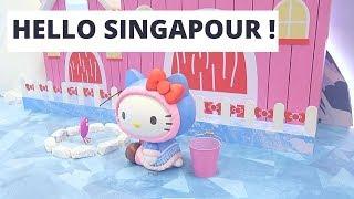 【VLOG SINGAPOUR】Escale de 11h Visite express ! 🛬 (20)