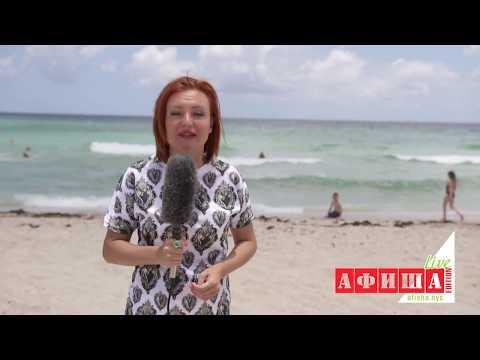 АКУЛЫ атакуют людей на пляже в Майами!