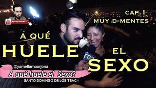 A QUÉ HUELE EL SEXO  #MUYDEMENTES #ELDEPAREC