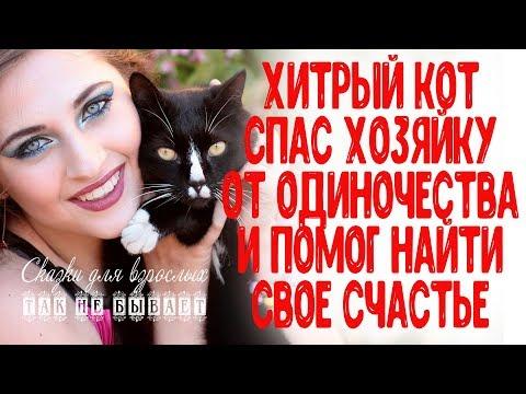 Хитрый кот спас хозяйку от одиночества и помог ей найти свое счастье