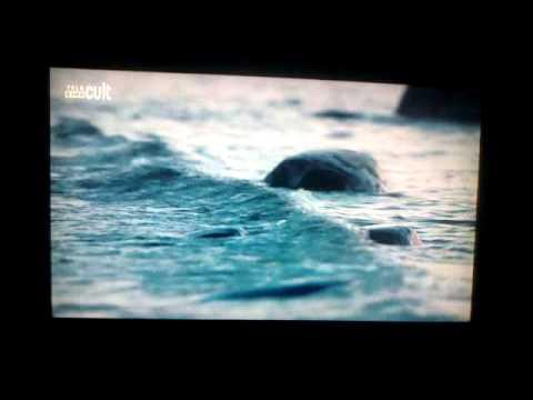 Trailer do filme Liv & Ingmar – uma história de amor