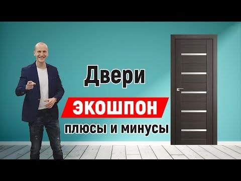 Вся правда о дверях Экошпон