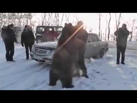 This Was True, Russians Do Have Pet Bears, LOL