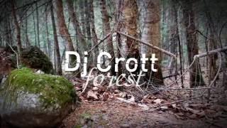 DJ Crott  -  FOREST ( chillout music ) / Терней фото