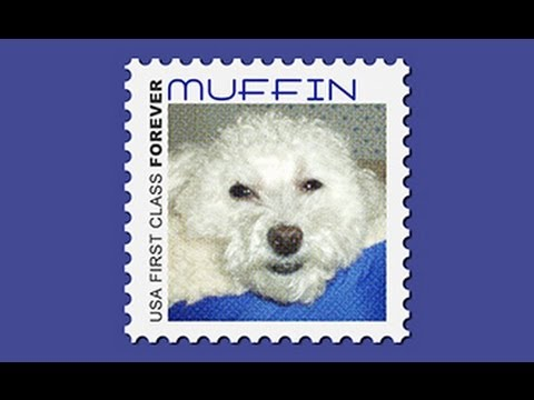 Photoshop Tutorial: How to Make Your Own POSTAGE STAMP.