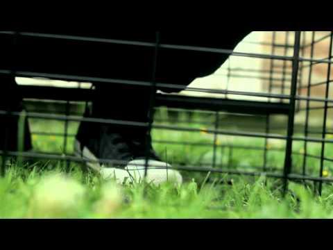 Jay Lyn Gatz - Long Gone ft. Raffinae Keyes (Music Video Preview)