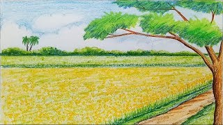 How to draw scenery of Mustard field step by step