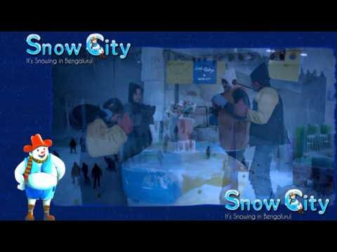 Do's and Don'ts at Snow City