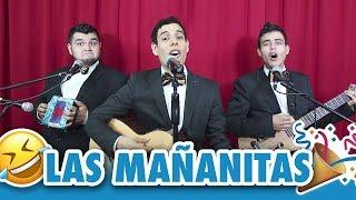Las Mañanitas | Los Tres Tristes Tigres