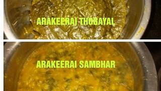 Preparing arakeerai thogayal and arakeerai sambhar|Healthy Keerai recipes for lunch