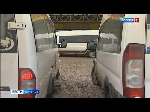 Костромская автошкола незаконно разрешала мигрантам получать права на автобус