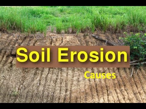 Soil erosion causes soil conservation video for kids for Different types of soil for kids
