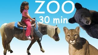 Kids Toy Corner is visiting huge park with ZOO, Petting ZOO, Train ...