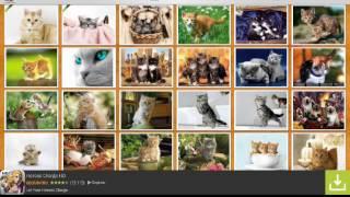 Как скачать фото с котами на андроид