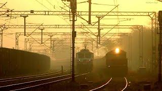 Golden Early Morning || Mahamana Superfast Express || 110 kmph Curvy Action at Kuchesar Road, UP