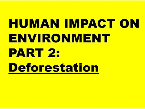 HUMAN IMPACTS ON ENVIRONMENT PART 2: Deforestation (Exam 1)