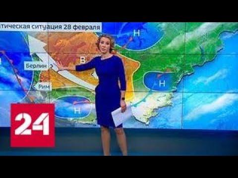 """""""Погода 24"""": на побережье Баренцева моря теплее, чем в Подмосковье - Россия 24"""
