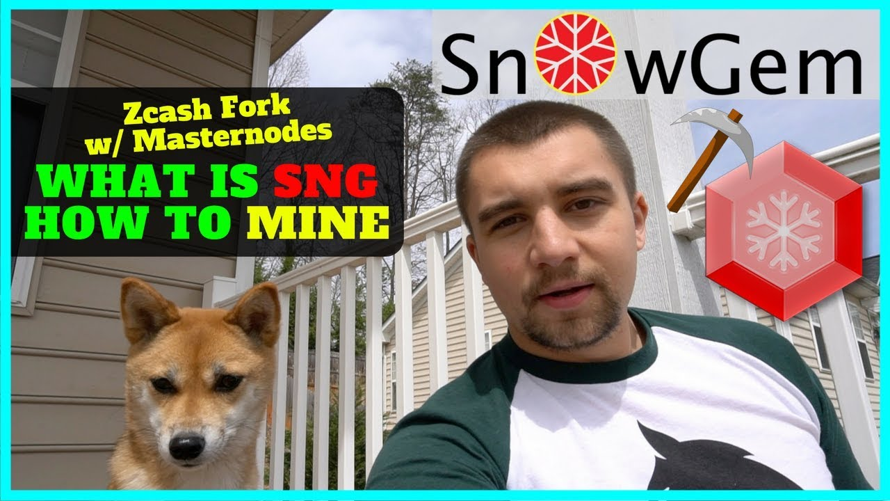 What is Snowgem SNG - a Zcash Fork w/ Masternodes + How To Mine SNG