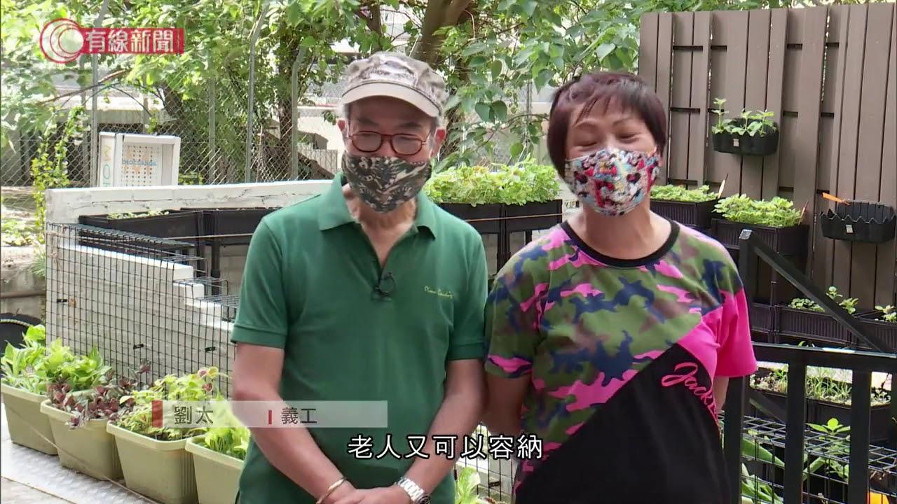 市建局上環空地變苗圃  - 20200713 - 香港新聞 - 有線新聞 CABLE News