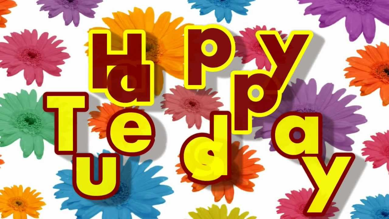 Happy Tuesday Greeting Card