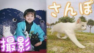 猫モデルのお仕事に行ってきた。【猫さんぽ】 thumbnail