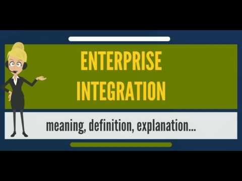 What is ENTERPRISE INTEGRATION? What does ENTERPRISE INTEGRATION mean?