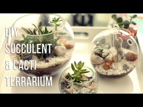 HOW TO MAKE  SUCCULENTS & CACTI TERRARIUM (DIY) // CÓMO HACER UN TERRARIO