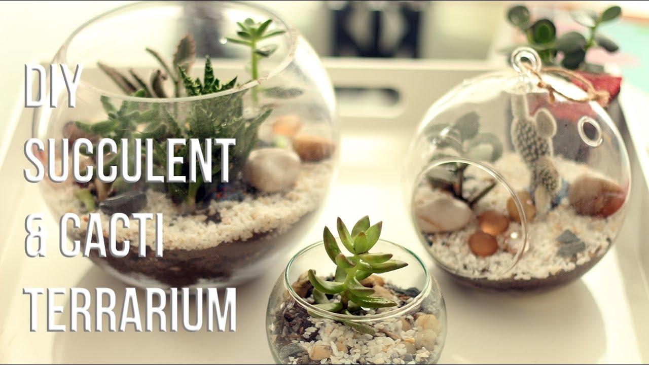How To Make Succulents Cacti Terrarium Diy Como Hacer Un