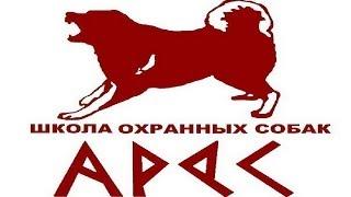 Охранные собаки Украины .