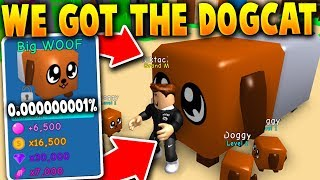 WE GOT GIVEN THE *SECRET* DOGCAT PET!! (ONLY ONE IN THE WORLD!) - Roblox Bubble Gum Simulator