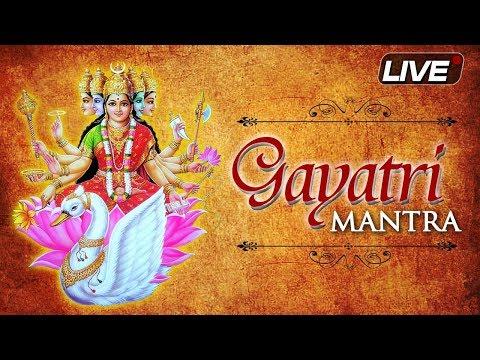 LIVE: Non-Stop Gayatri Mantra Chanting | गायत्री मंत्र जाप