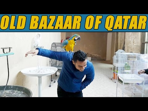 OLD BAZAAR OF QATAR!!