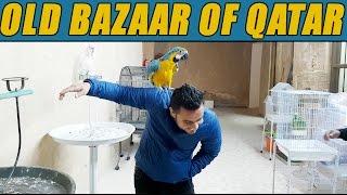 OLD BAZAAR OF QATAR!!