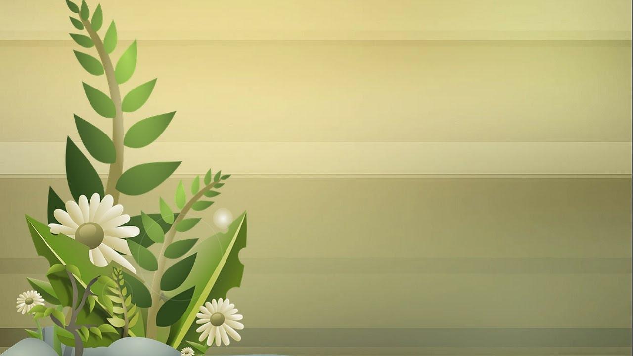 10 plantas con flores youtube for Plantas ornamentales con flores