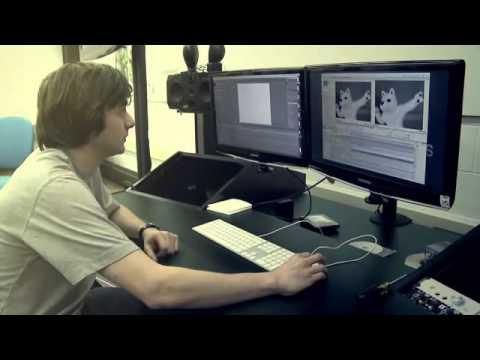 UConn Digital Media & Design Degree Prepares You For Career Opportunities In The Digital Media Space