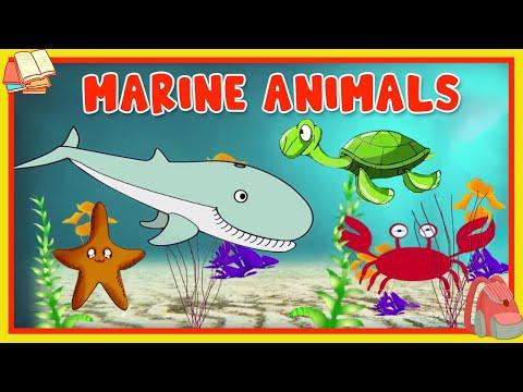 Animated Animal
