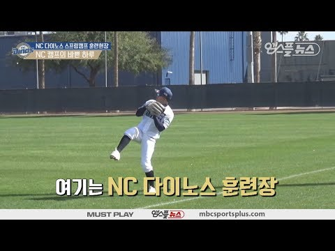 【KBO Spring Camp】 A busy day at the NC Dinos Camp