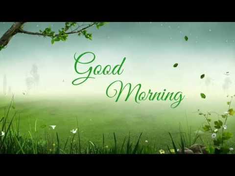 Good morning status | Animation | Good morning videos for whatsapp